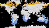 Karte zur Verbreitung der Schmarotzerraubmöwe (Stercorarius parasiticus)