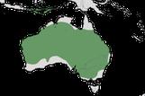 Karte zur Verbreitung der Dünnschnabelmöwe (Chroicocephalus genei).