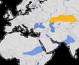 Karte zur Verbreitung des Steppenkiebitzes (Vanellus gregarius)