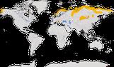 Karte zur Verbreitung des Mornellregenpfeifers (Charadrius morinellus)