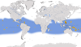 Karte zur weltweiten Verbreitung der Rußseeschwalbe (Onychoprion fuscatus).