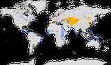 Karte zur Verbreitung der Lachseeschwalbe (Gelochelidon nilotica).