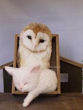 リアル 羊毛フェルト 猫 メンフクロウ