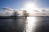 Flooding| River Elbe | February