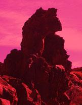 Drachen-Kunst-Poster 301