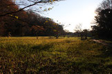 Shomioji 称名寺 - a great place for a short hike!