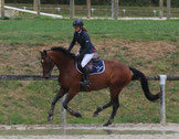 SF CCE CSO Haras du Pin Obstacle