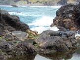 Kleine Badebucht direkt vom Meer in die Felsen gewaschen.