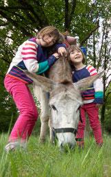 Les ânes de Madame, randonnées nature accompagnées en Sologne et Val de Loire - Câlins et complicité
