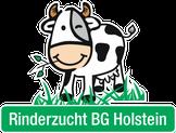 Rinderzucht BG Holstein