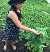Vindobona Montessori Privatschule Nachmittag