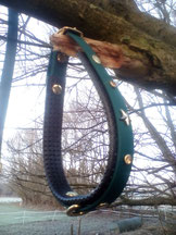 Schmuckhalsband, Hundehalsband aus Biothane