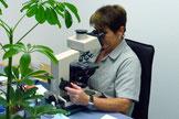 Arbeitsplatz Zytologie