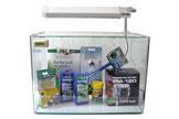 38 Liter Komplett-Set der Firma Aqua-Tropica. Ideal für den Einstieg in die Garnelenhaltung.