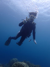 石垣島でのんびり、初の体験ダイビングに挑戦