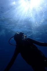 石垣島で、初の体験ダイビング
