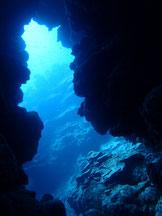 石垣島でのんびりダイビング「ケーブダイビング」