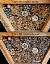 Insektennisthilfe Insektenhotel Nisthilfe Strohhalme