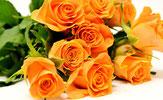 Wie betörend ist der Duft der Rosen