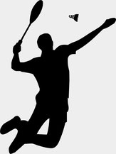 Abteilung Badminton vfb steudnitz