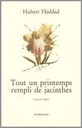 Hubert Haddad Olivier O. Olivier Printemps Rempli Jacinthes Dumerchez Bernard Editions Editeur