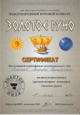 Сертификат Международного игрового конкурса (2011 г.)