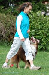 Balu hat mit 11 Jahren noch viel Spaß an (Rally-) Obedience