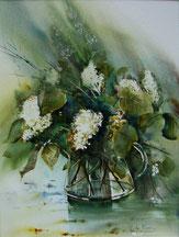 Lilas blanc-Aquarelle