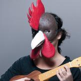 The Bremen twon musicians