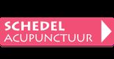 link: schedelacupunctuur