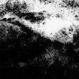 Anthony Laguerre - Myotis