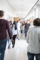 NMS mit Bewegungsunschärfe  Foto; Joachim Wiesner