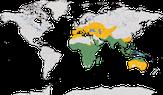 Karte zur Verbreitung der Familie der Bienenfresser (Meropidae)