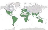 Karte zur Verbreitung der Schleiereulen