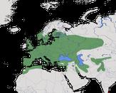 Karte zur Verbreitung des Waldkauzes (Strix aluco)