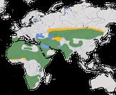 karte zur Verbreitung der Flughühner (Pteroclidae)