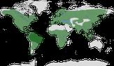 Karte zur Verbreitung der Ordnung der Spechtvögel (Piciformes)