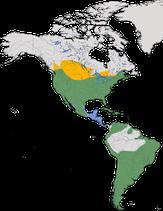 Karte zur Verbreitung der Gattung Trauertauben (Zenaida)