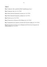 Tafel 12