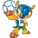ブラジル FIFA 2014