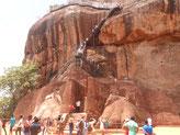 le lion de Sigiriya