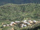 Et les champs de thé depuis Haputale