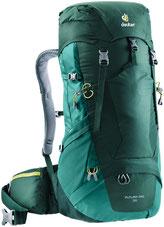 forest-alpinegreen