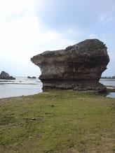 久米島清水小学校前海岸の2重ノッチ