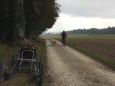 Frauchen kommt mit Snow und Blizzi am Bike