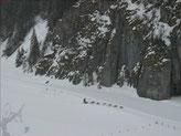 ...von unseren Kumpels in Alaska...