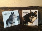 Fotobuch von Skeena und mir