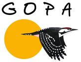 oiseaux, Pyrénées atlantiques, ornithologie,