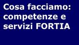 Cosa facciamo: le competenze e i servizi FORTIA per le organizzazioni di vendita. Rendiamo più efficaci le organizzazioni di vendita: formazione, motivazione, supporto nel tempo.