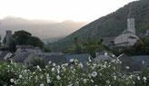 Les Ruchers du val d'Ossau à Castet partenaires avec l'ACCOB  au Bager d'Oloron